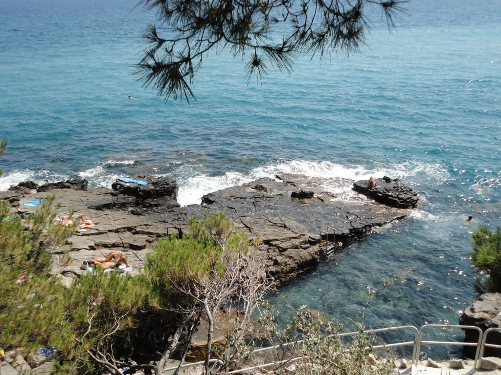 corallini-cervo-porthegetto